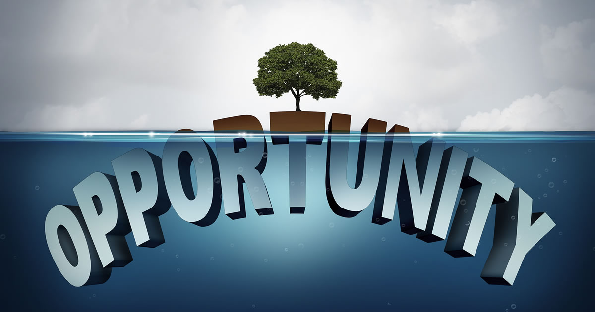A tree with the word opportunity beneath it underwater