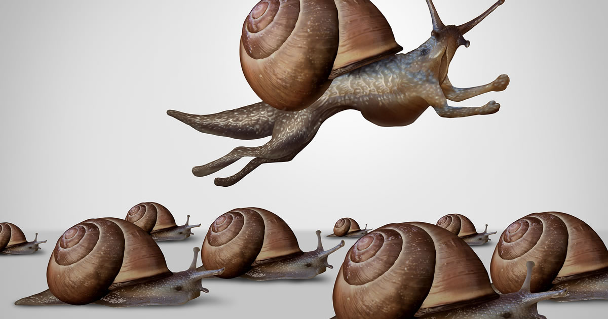 Illustration of one snail leaping over a group of snails