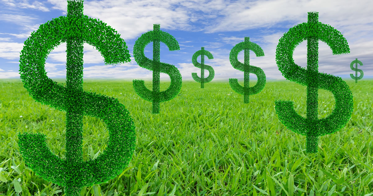 Multiple recurring dollar-symbol plants in grass field with blue sky