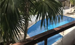 View from balcony of swimming pool and palm trees