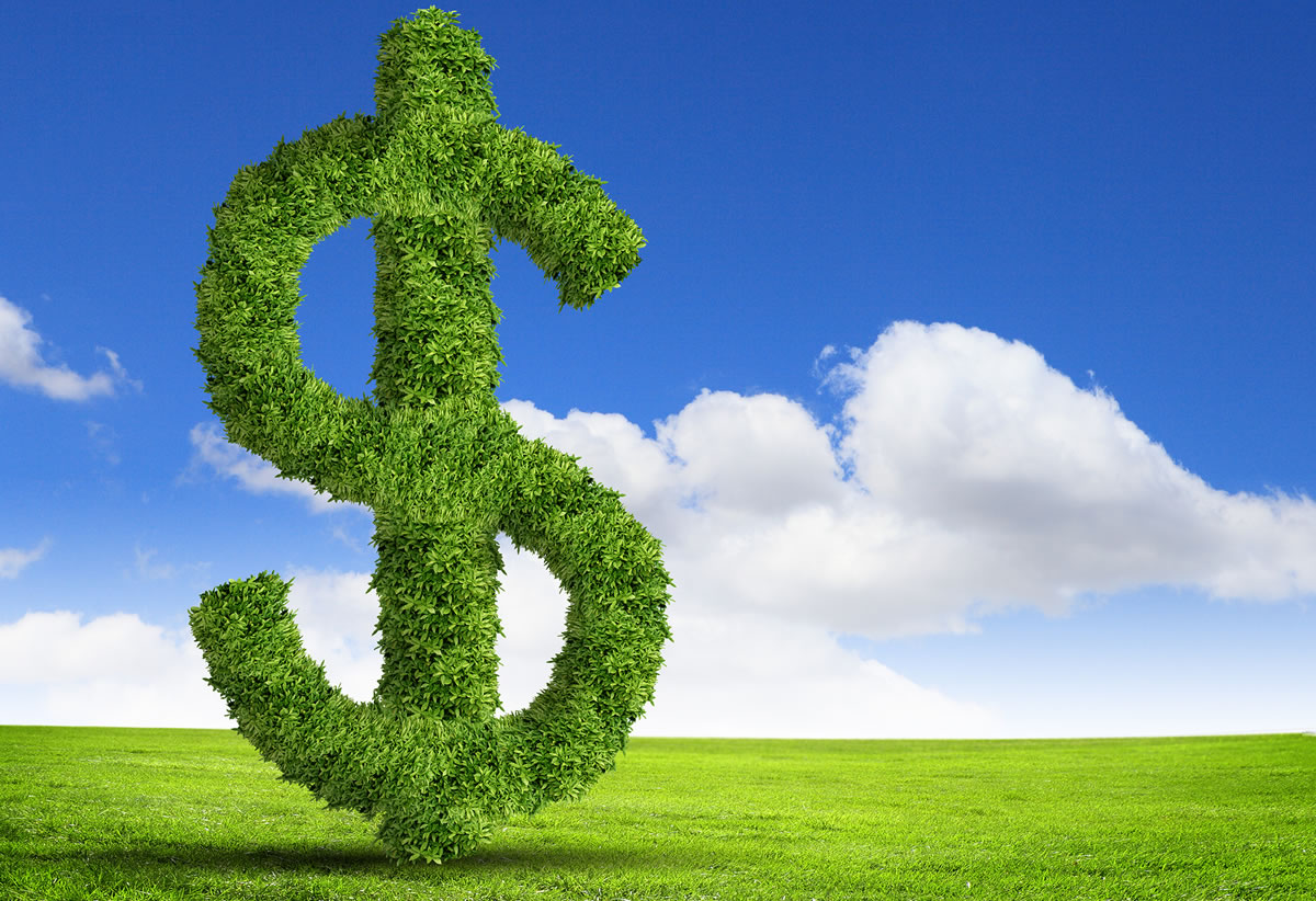 Making professional fees concept: US dollar symbol flourishing topiary on green grass against blue sky