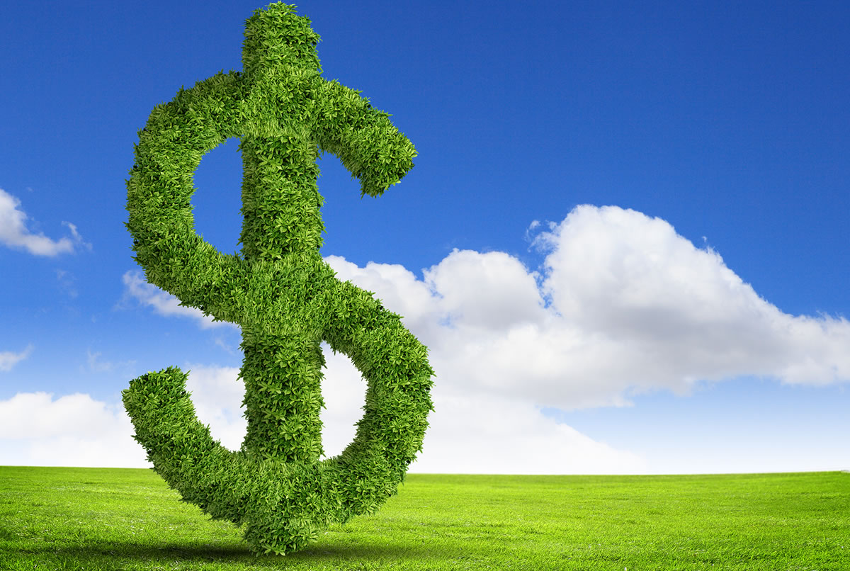 US dollar sign symbol made of green grass growing up from green grass with blue sky background