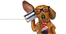 Dog wearing necktie and eyeglasses listening to tin can telephone